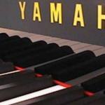 piano numerique avjus